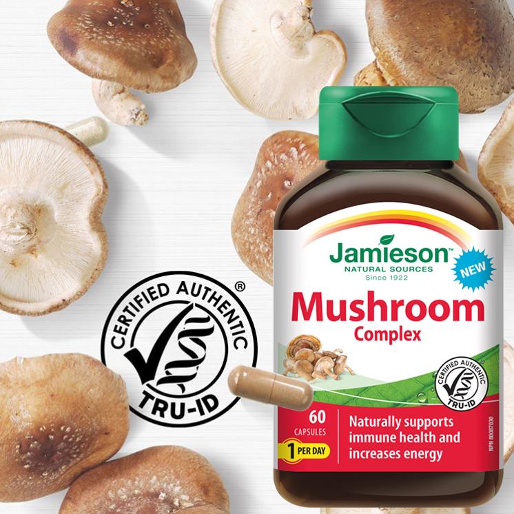 Adaptogenní houby